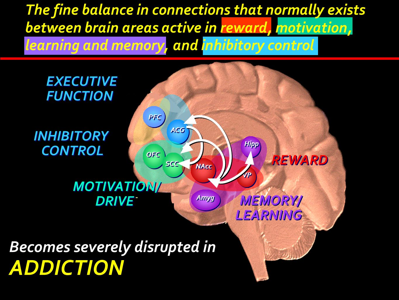 ADDICTION Becomes severely disrupted in