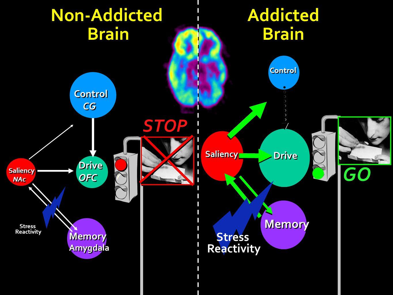 GO Non-Addicted Brain Addicted Brain STOP Memory Memory Stress