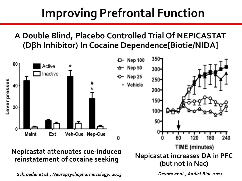 Improving Prefrontal Function
