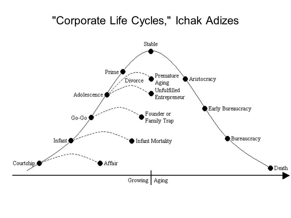 Corporate Life Cycles, Ichak Adizes