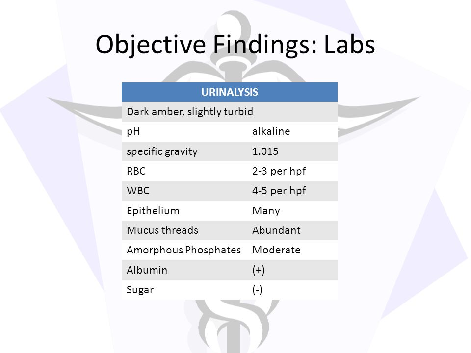 Objective Findings: Labs