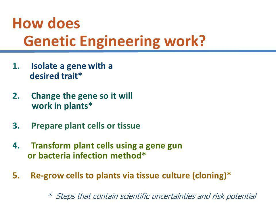 How does Genetic Engineering work