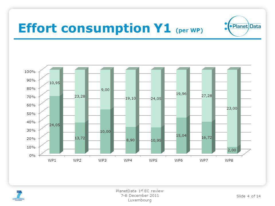 Effort consumption Y1 (per WP)