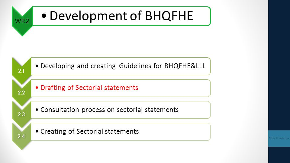 WP.2 Development of BHQFHE. 2.1. Developing and creating Guidelines for BHQFHE&LLL. 2.2. Drafting of Sectorial statements.