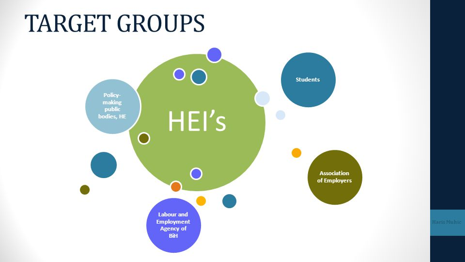 TARGET GROUPS HEI's. Policy-making public bodies, HE. Students. Association of Employers. Labour and Employment Agency of BiH.