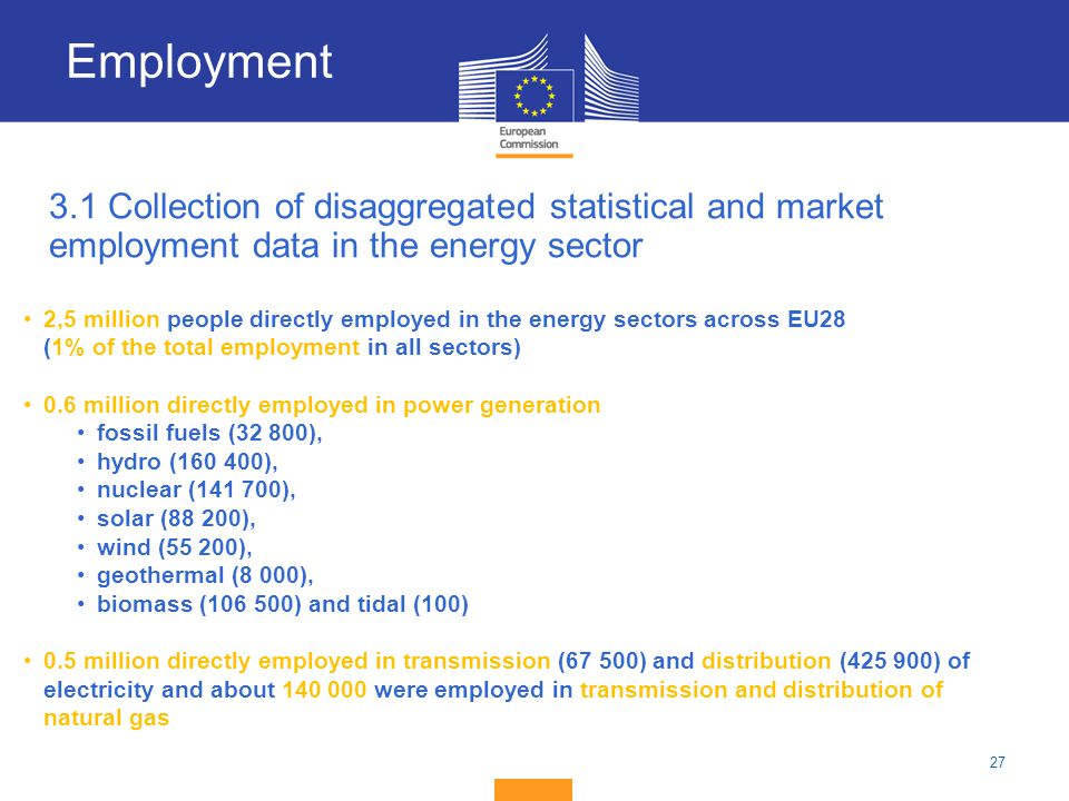 Employment 3.1 Collection of disaggregated statistical and market employment data in the energy sector.