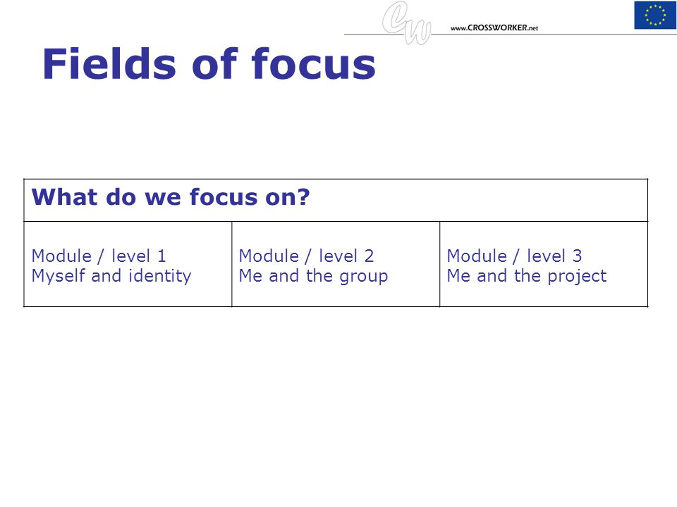 Fields of focus What do we focus on Module / level 1