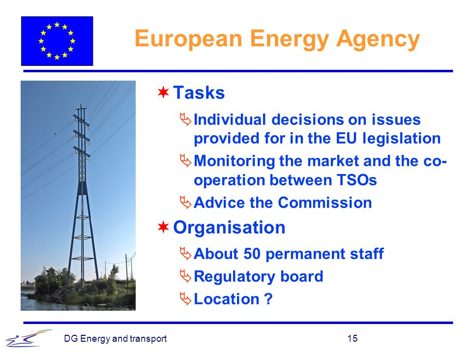 European Energy Agency