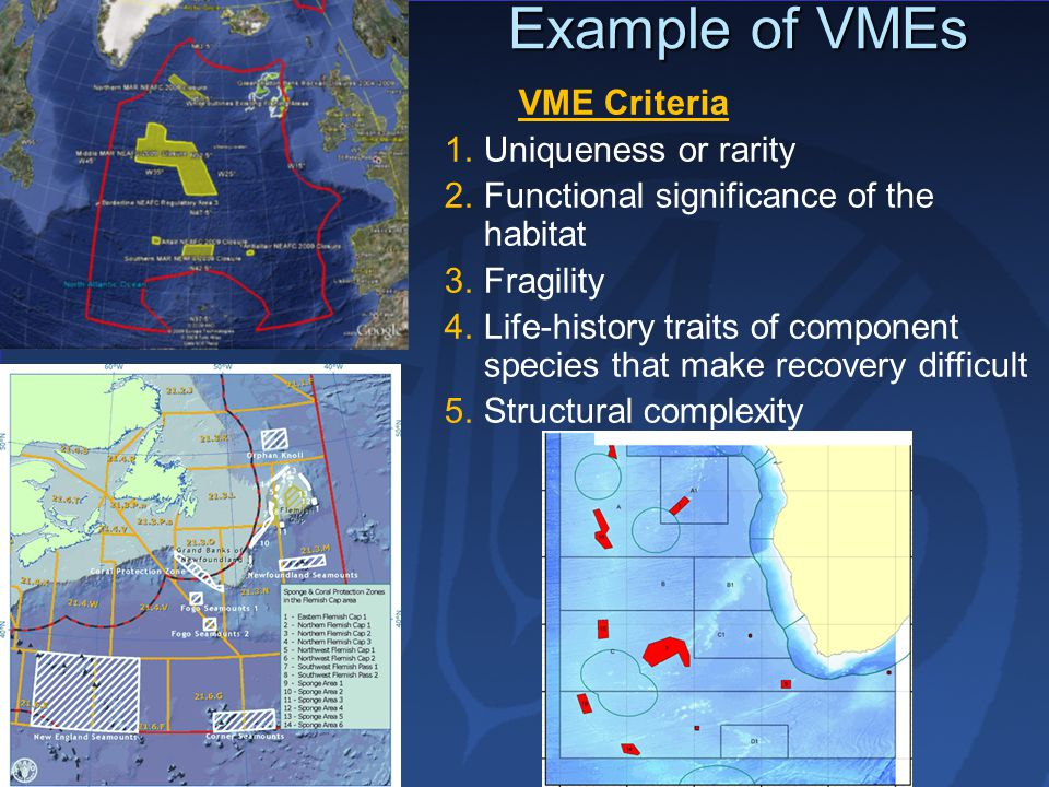 Example of VMEs VME Criteria Uniqueness or rarity