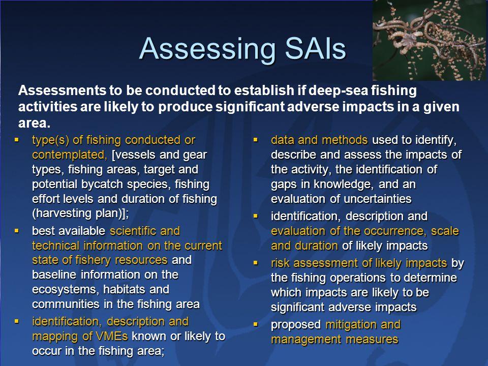 Assessing SAIs