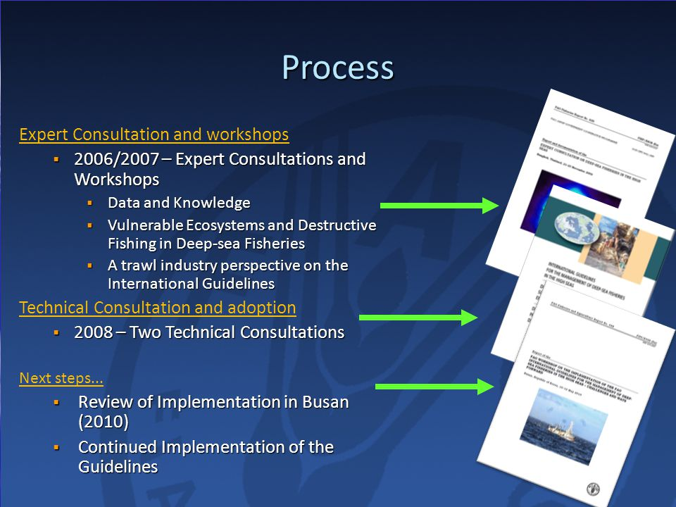 Process Expert Consultation and workshops