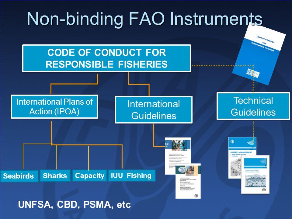 Non-binding FAO Instruments