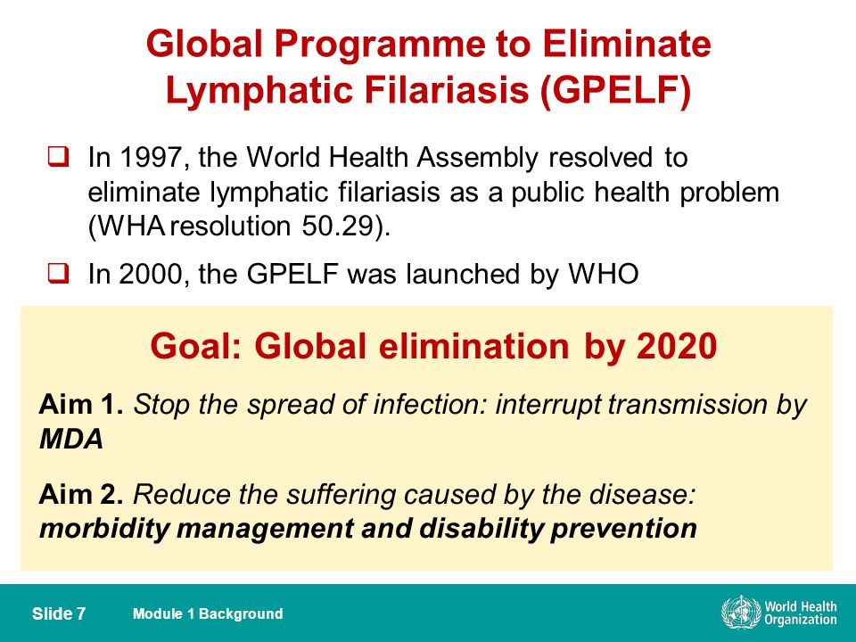 Global Programme to Eliminate Lymphatic Filariasis (GPELF)
