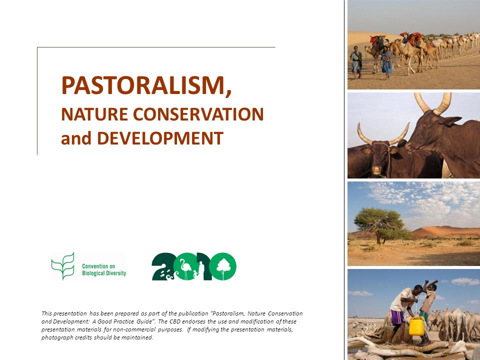 PASTORALISM, NATURE CONSERVATION and DEVELOPMENT