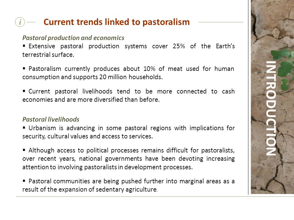 Current trends linked to pastoralism