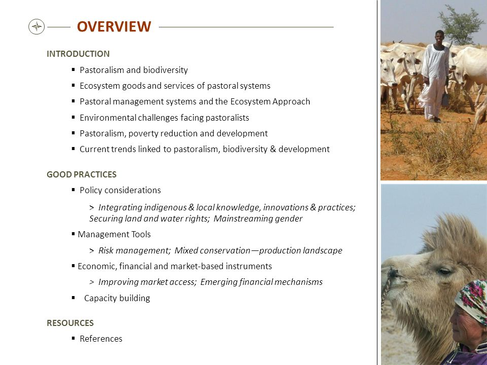 OVERVIEW  INTRODUCTION Pastoralism and biodiversity