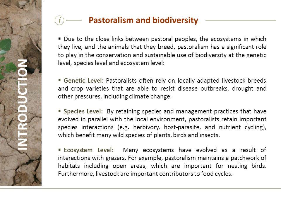 Pastoralism and biodiversity