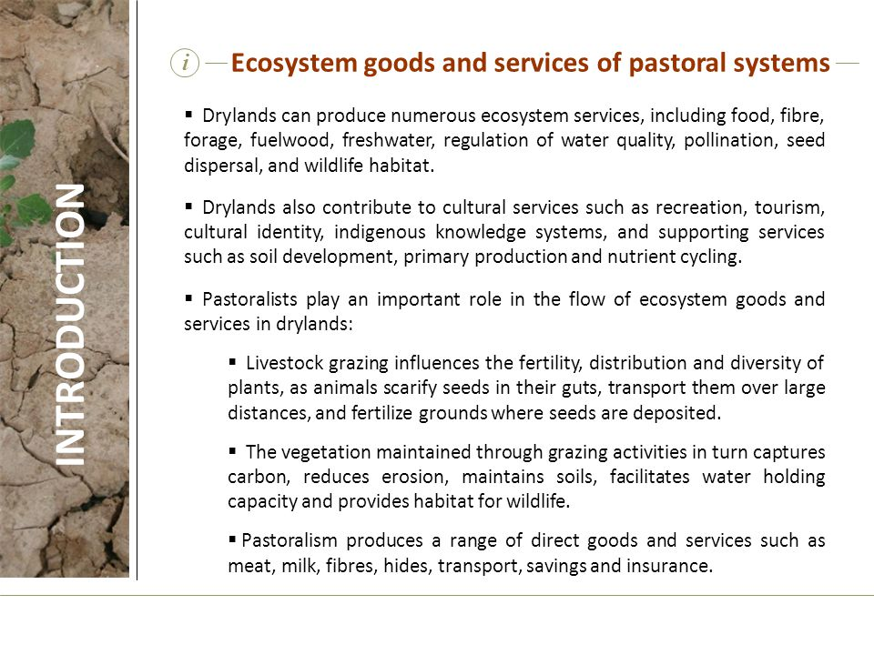 Ecosystem goods and services of pastoral systems