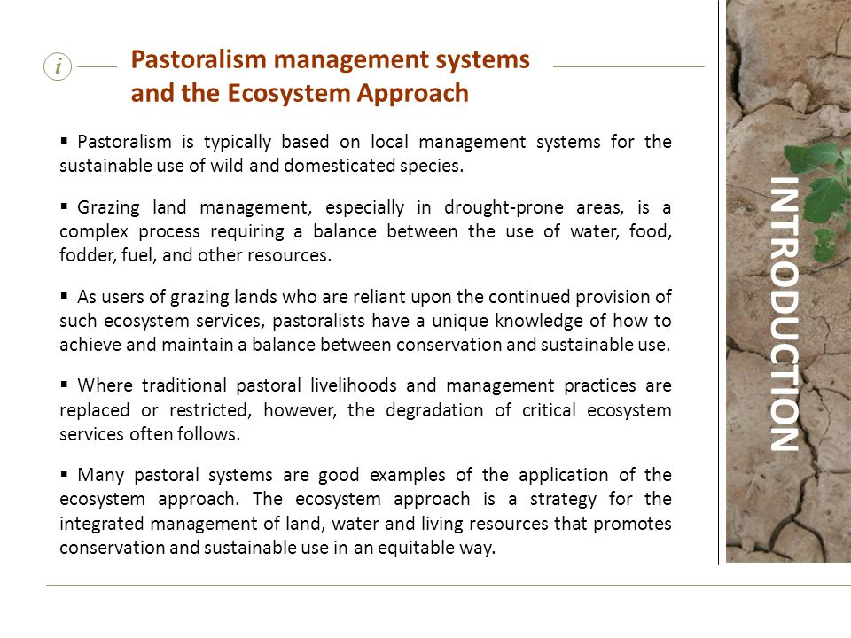 INTRODUCTION Pastoralism management systems and the Ecosystem Approach