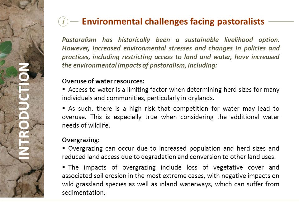 INTRODUCTION Environmental challenges facing pastoralists i