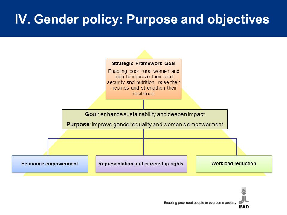 IV. Gender policy: Purpose and objectives