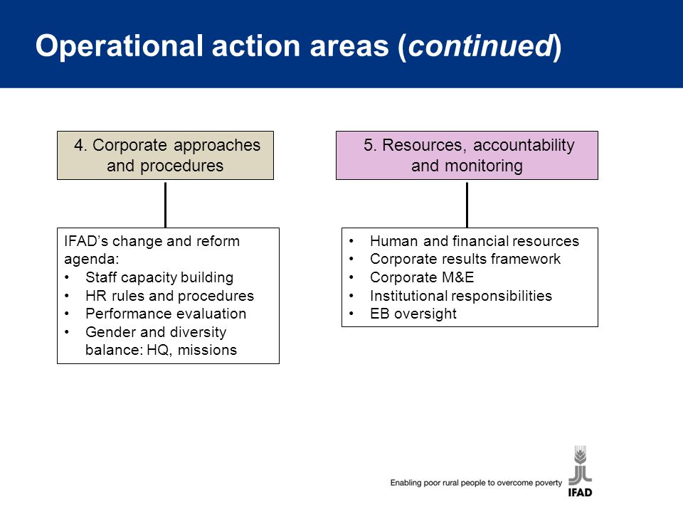 Operational action areas (continued)