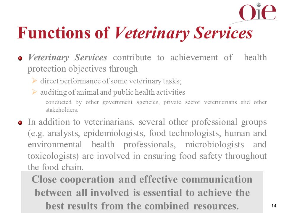 Functions of Veterinary Services