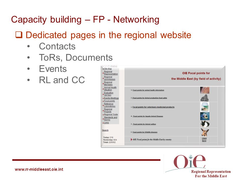 Capacity building – FP - Networking