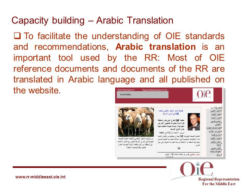 Capacity building – Arabic Translation