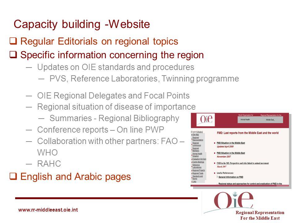 Capacity building -Website