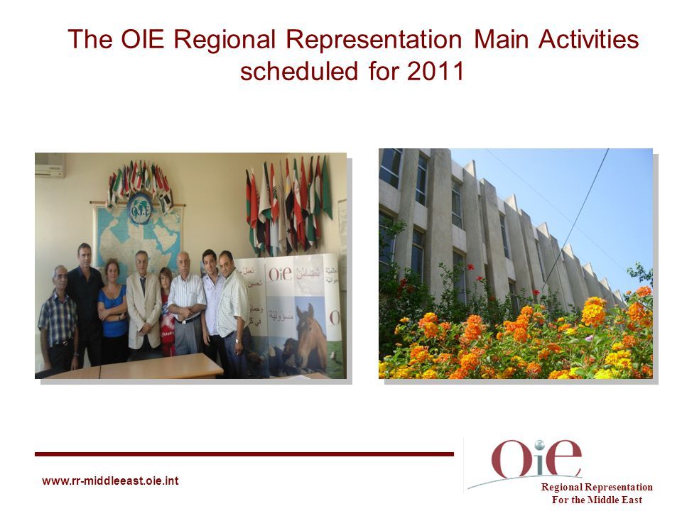 The OIE Regional Representation Main Activities scheduled for 2011