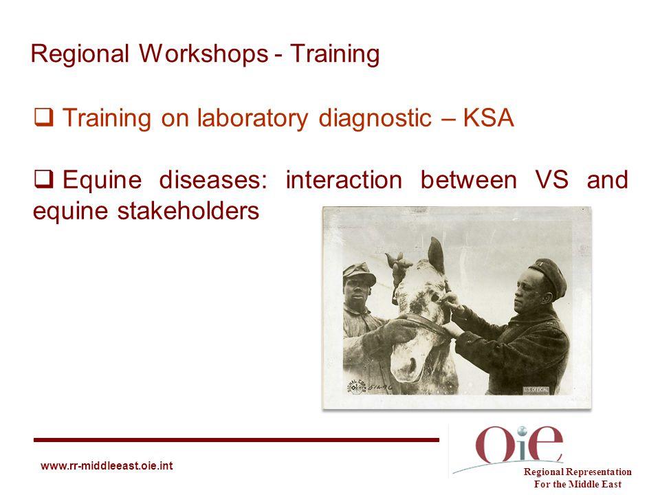 Regional Workshops - Training