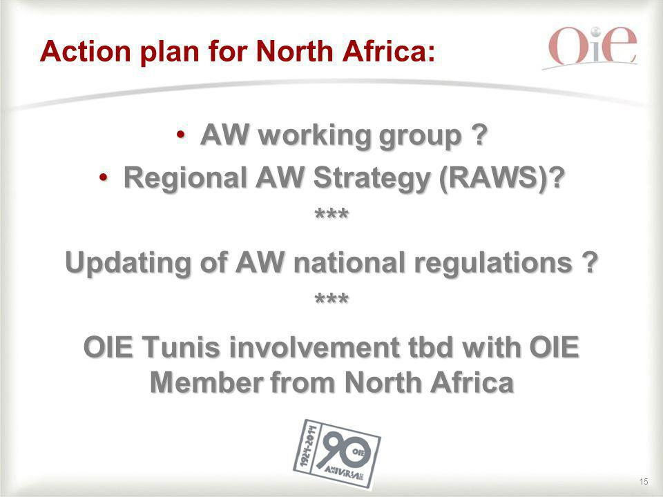 Action plan for North Africa: