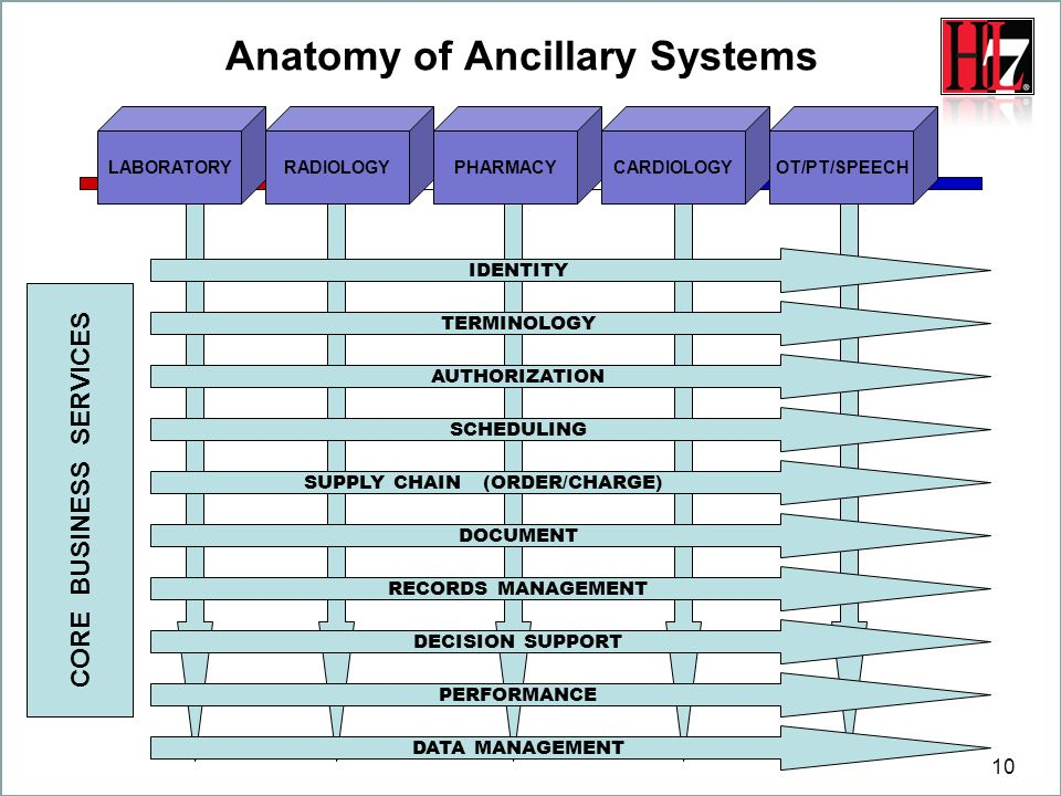 Anatomy of Ancillary Systems