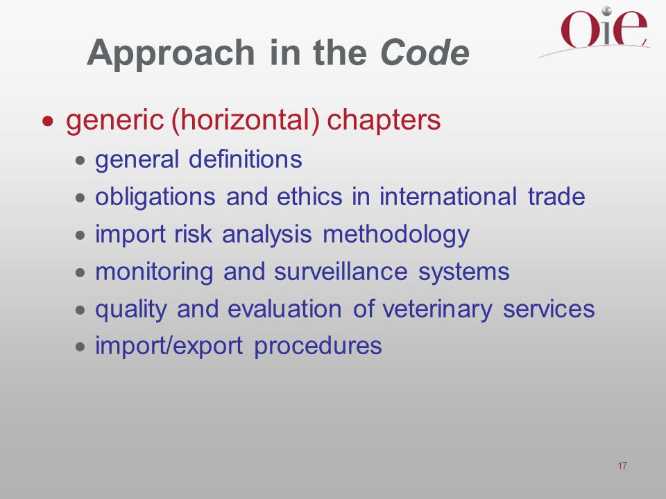 Approach in the Code generic (horizontal) chapters general definitions