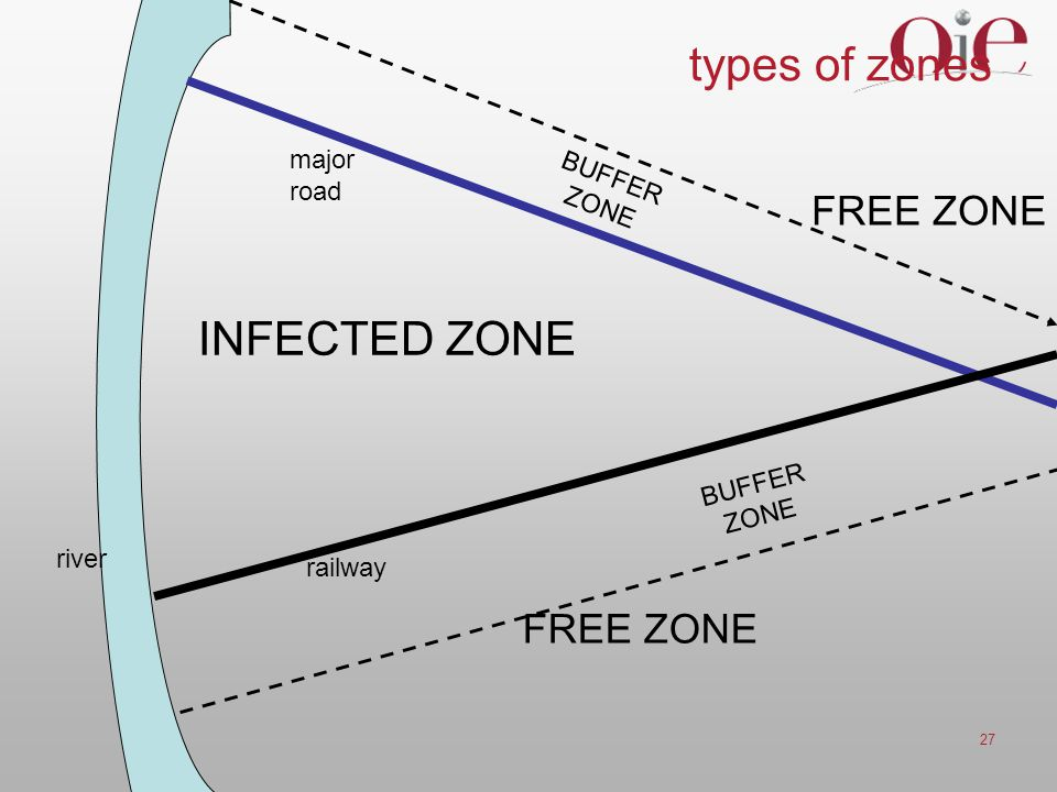 types of zones INFECTED ZONE FREE ZONE FREE ZONE major BUFFER road