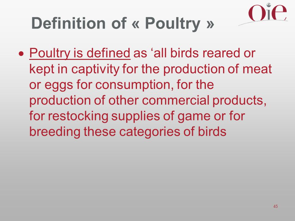Definition of « Poultry »