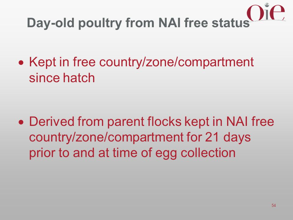 Day-old poultry from NAI free status