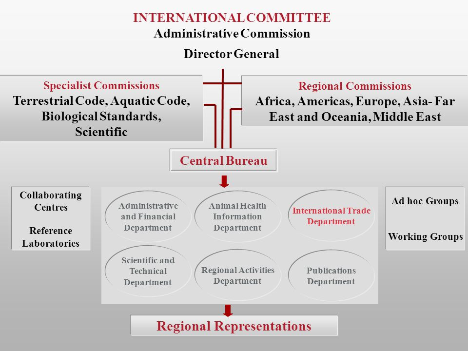Regional Representations