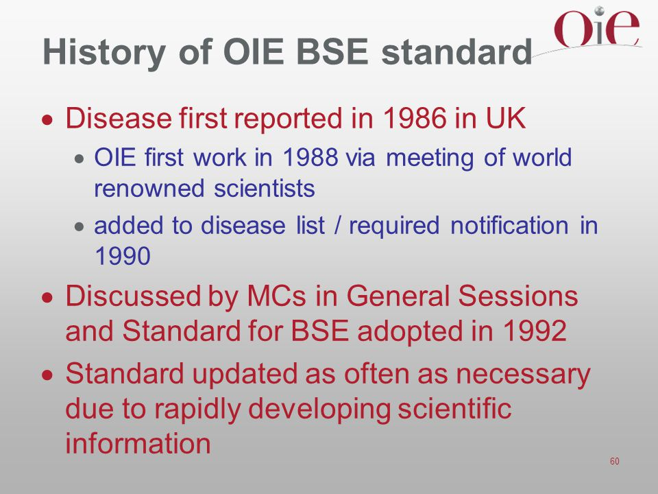 History of OIE BSE standard