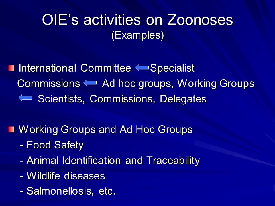 OIE's activities on Zoonoses (Examples)