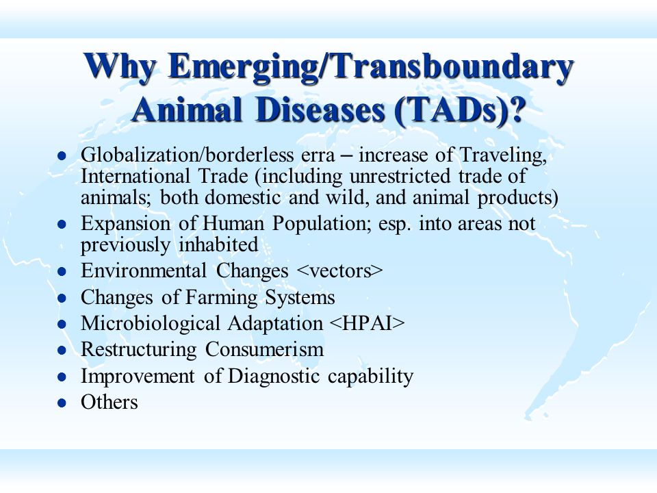 Why Emerging/Transboundary Animal Diseases (TADs)