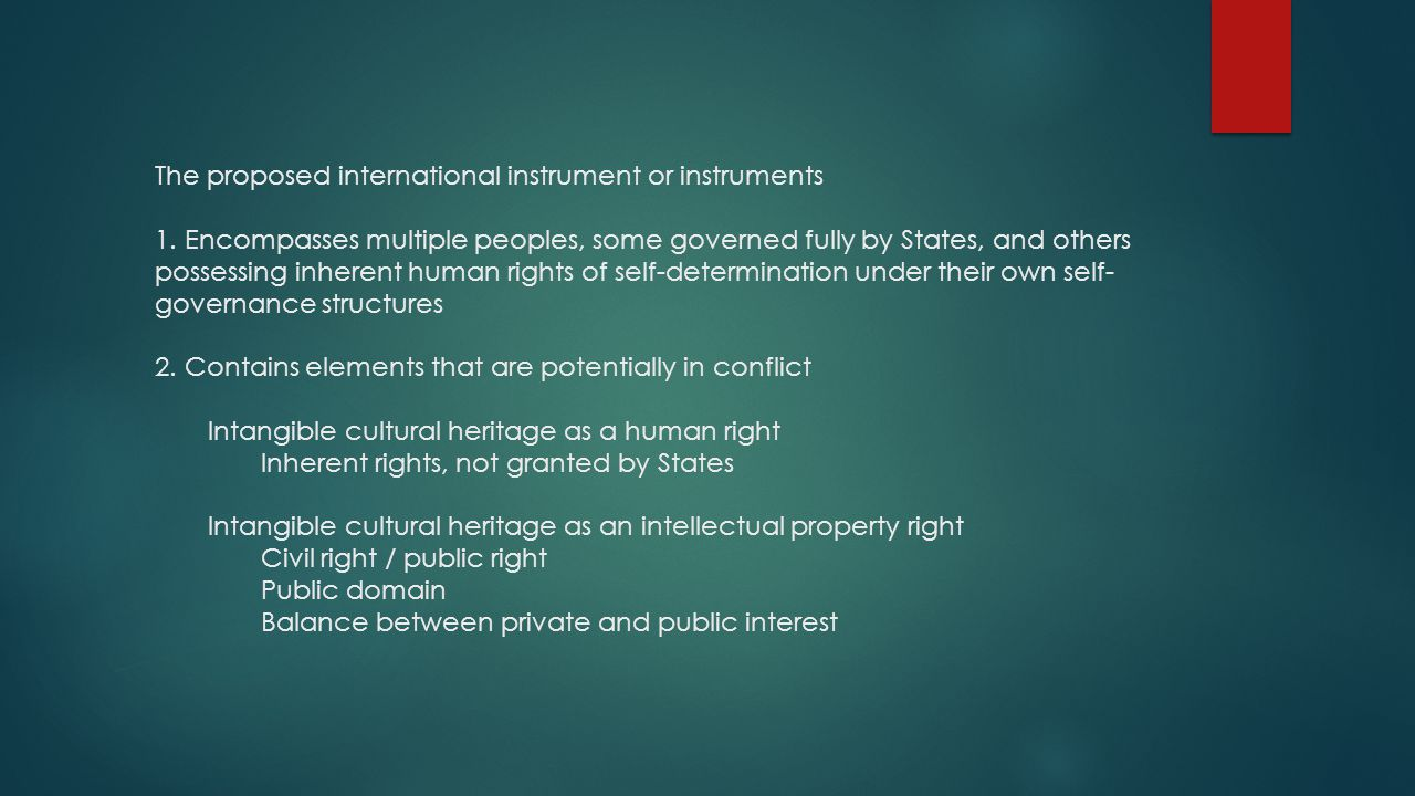 The proposed international instrument or instruments 1