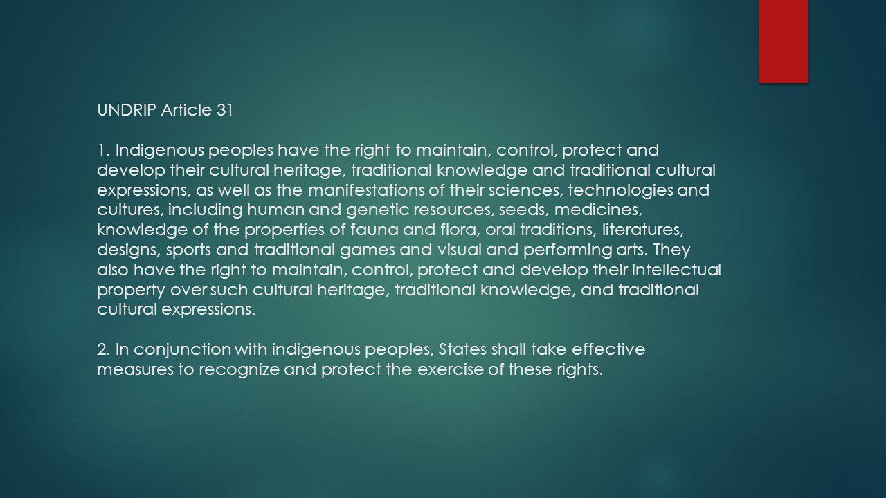 UNDRIP Article 31 1.