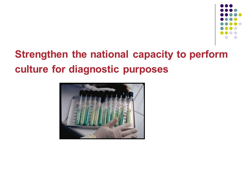 Strengthen the national capacity to perform