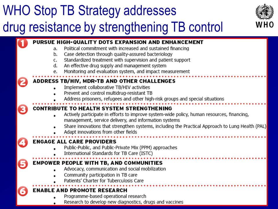 WHO Stop TB Strategy addresses