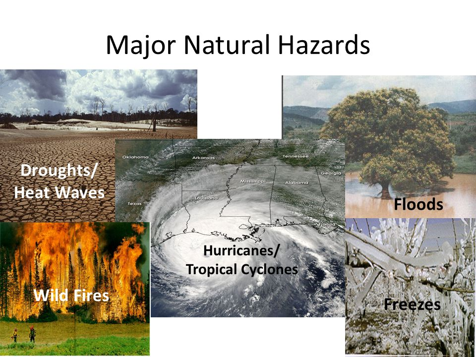 Major Natural Hazards Droughts/ Heat Waves Floods Wild Fires Freezes