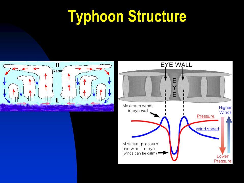 Typhoon Structure