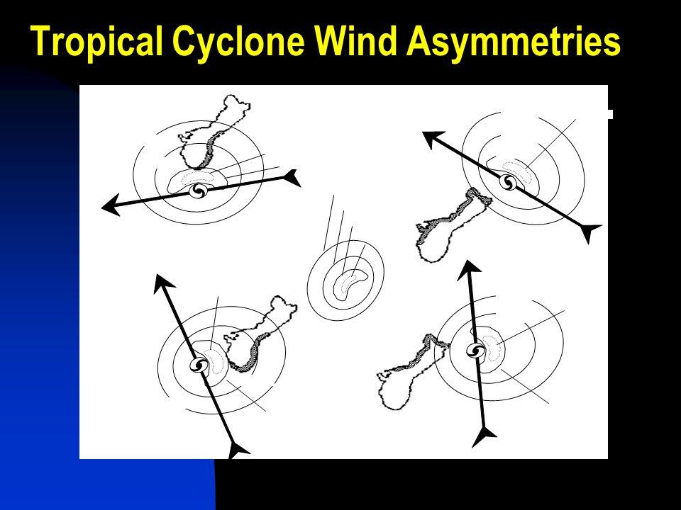 Tropical Cyclone Wind Asymmetries