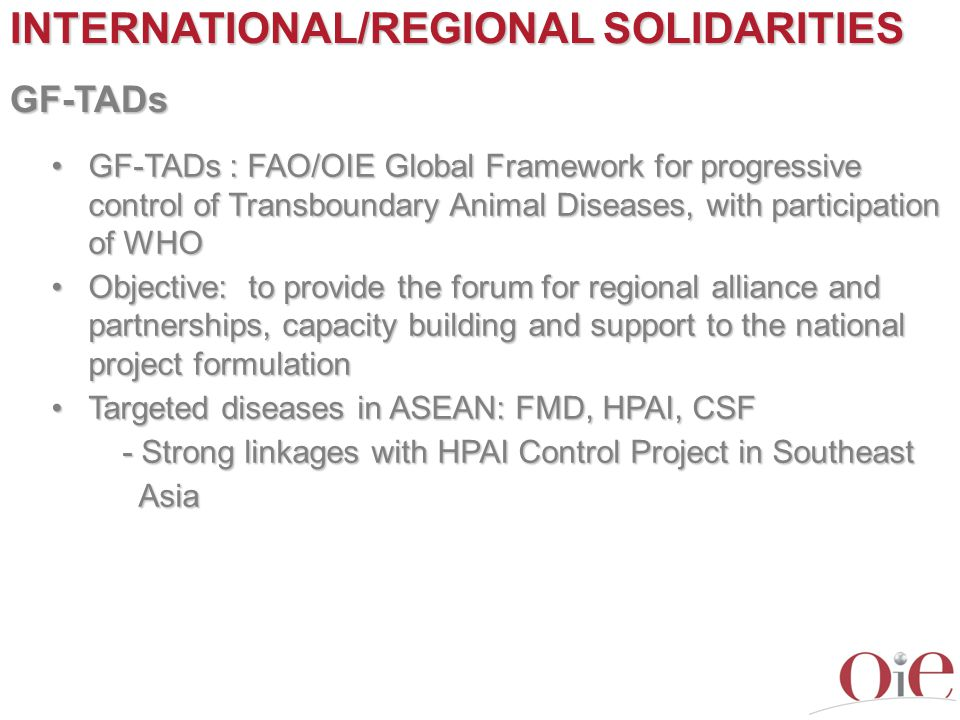 INTERNATIONAL/REGIONAL SOLIDARITIES